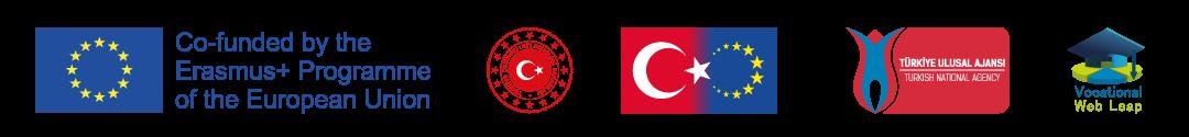 vocwebleap logo